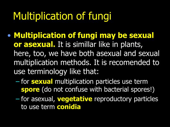 Multiplication of fungi