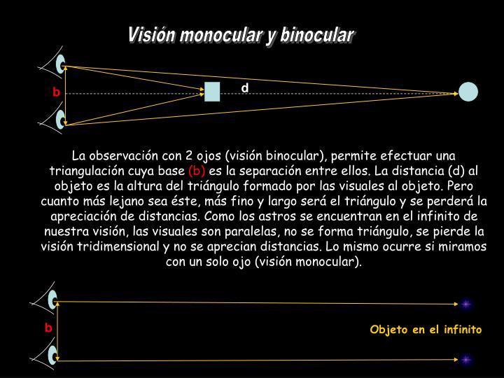 Visión monocular y binocular