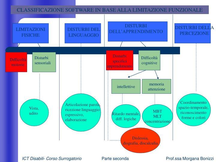 CLASSIFICAZIONE SOFTWARE IN BASE ALLA LIMITAZIONE FUNZIONALE