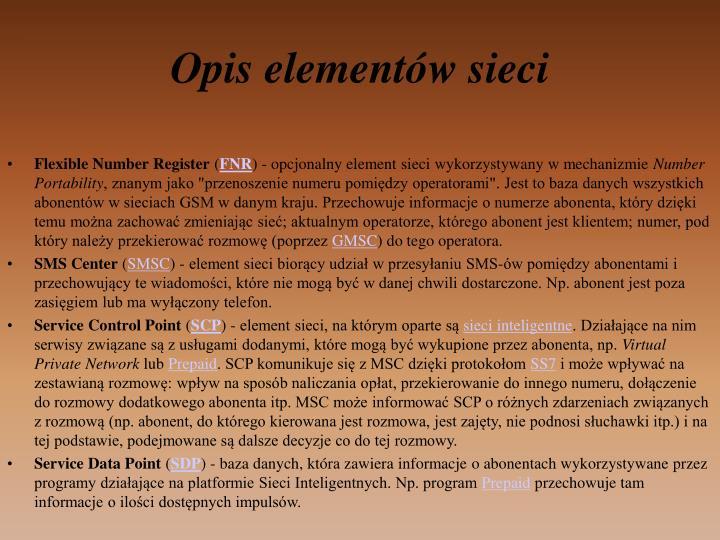 Opis elementów sieci