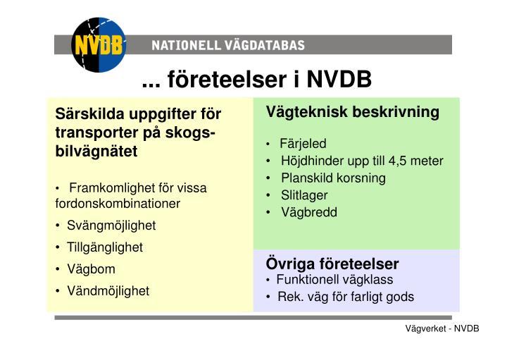 ... företeelser i NVDB