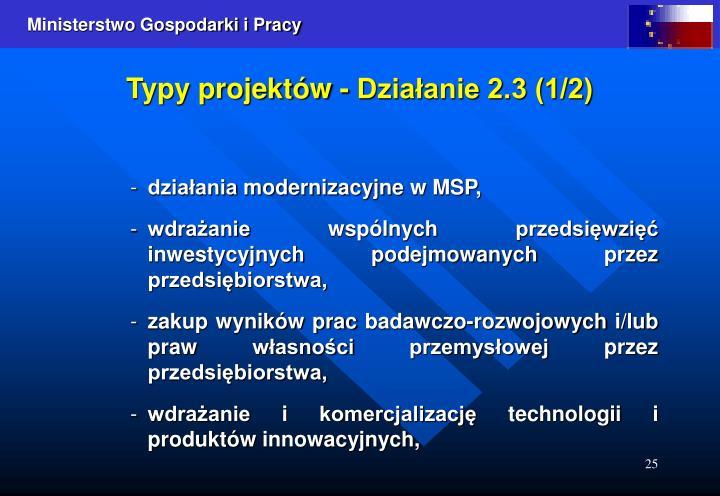 Typy projektów - Działanie 2.3 (1/2)