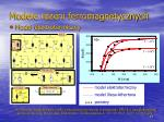 modele rdzeni ferromagnetycznych1