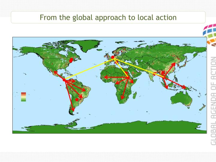 From the global approach to local action