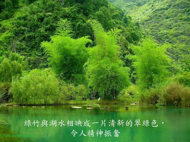綠竹與湖水相映成一片清新的翠綠色,