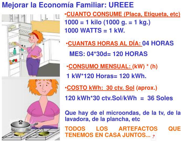 Mejorar la Economía Familiar: UREEE