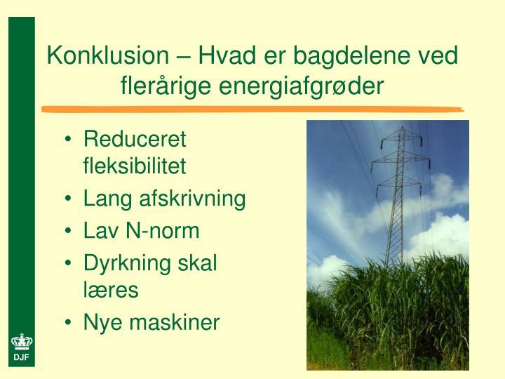 Konklusion – Hvad er bagdelene ved flerårige energiafgrøder