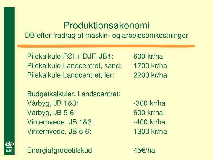 Produktionsøkonomi