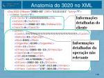 anatomia do 3020 no xml1