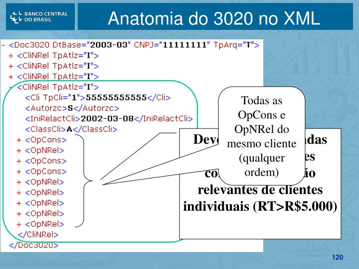Anatomia do 3020 no XML