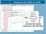 anatomia do 3020 no xml3