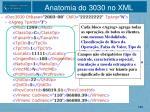 anatomia do 3030 no xml1