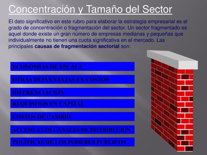 Concentración y Tamaño del Sector