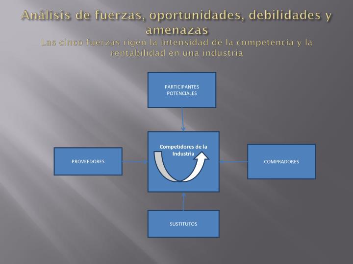 Análisis de fuerzas, oportunidades, debilidades y