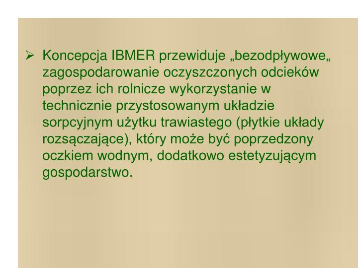 Koncepcja IBMER przewiduje