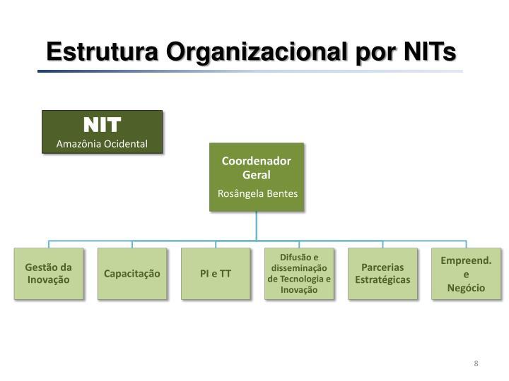 Estrutura Organizacional por
