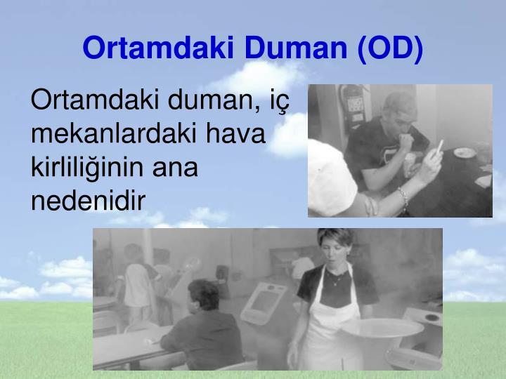 Ortamdaki Duman (OD)