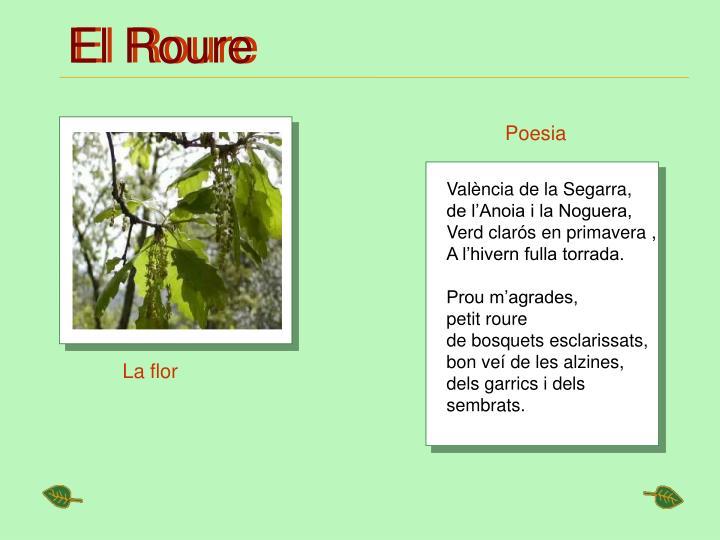 El Roure