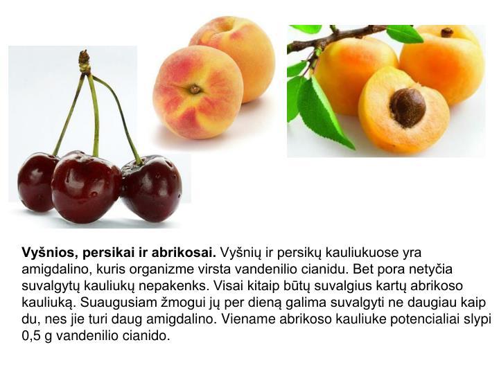 Vyšnios, persikai ir abrikosai.