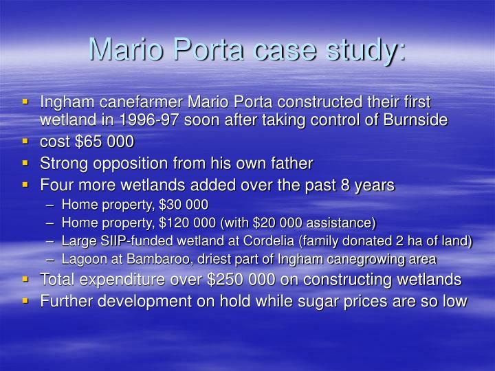 Mario Porta case study:
