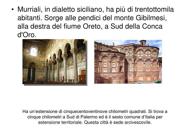 Ha un'estensione di cinquecentoventinove chilometri quadrati. Si trova a cinque chilometri a Sud di Palermo ed è il sesto comune d'Italia per estensione territoriale. Questa città è sede arcivescovile.