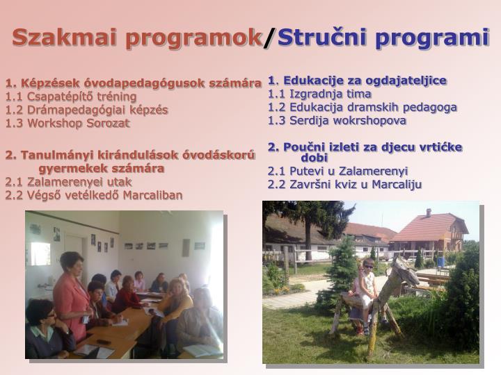 Szakmai programok