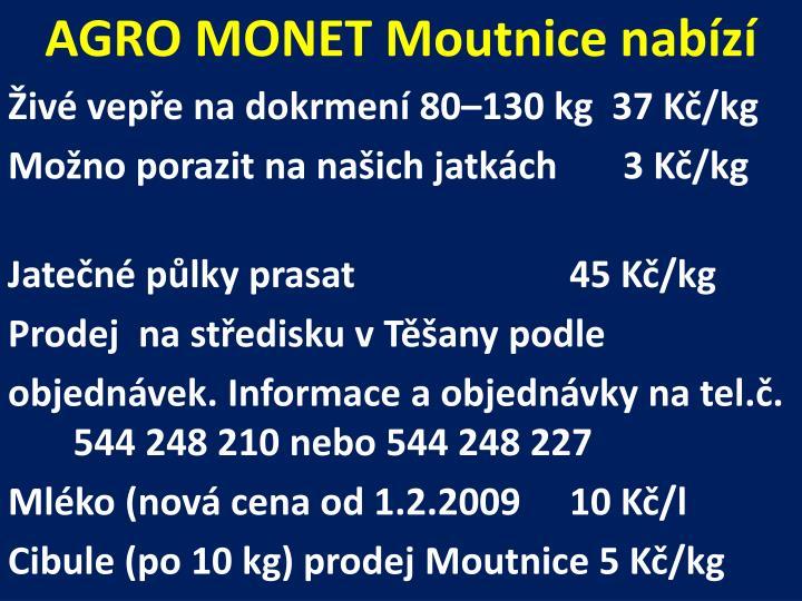 AGRO MONET