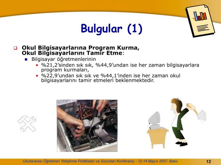 Bulgular (1)