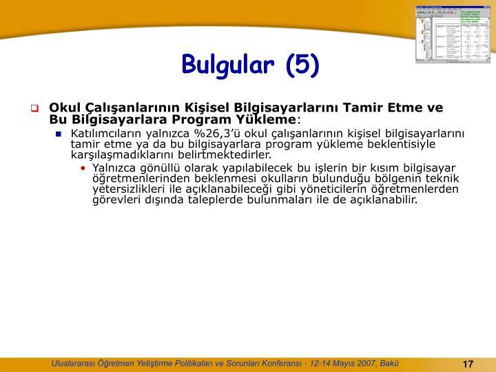Bulgular (5)
