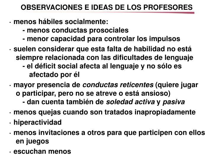 OBSERVACIONES E IDEAS DE LOS PROFESORES