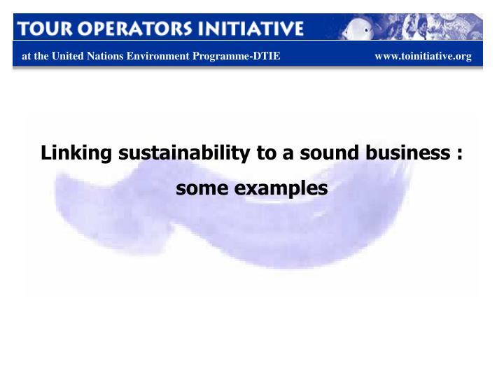 Linking sustainability to a sound business :
