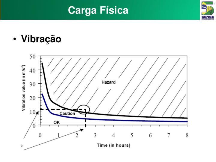 Carga Física