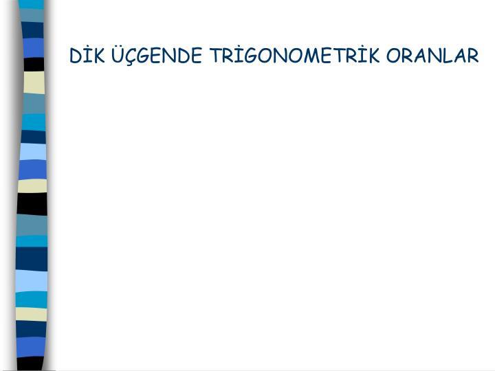 DK GENDE TRGONOMETRK ORANLAR