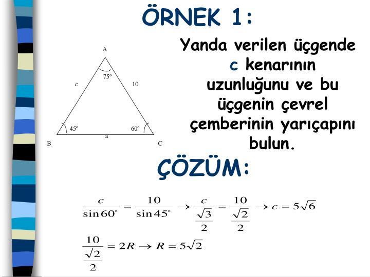 RNEK 1: