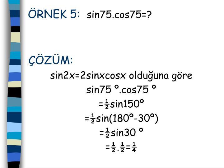 RNEK 5: