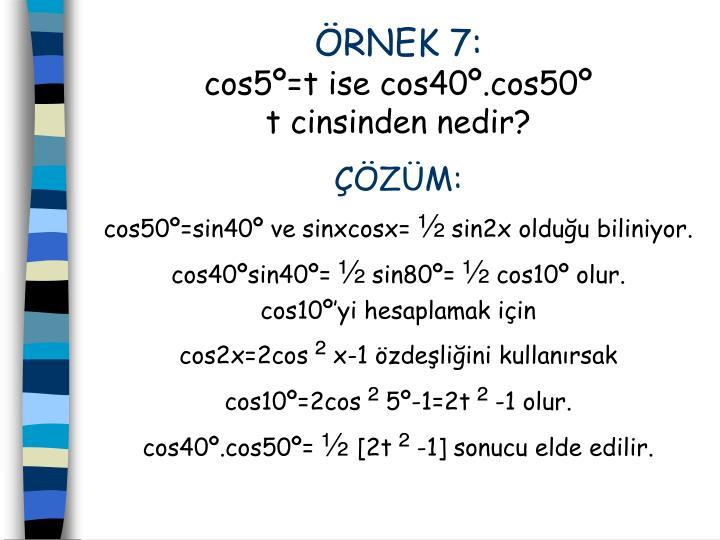 RNEK 7: