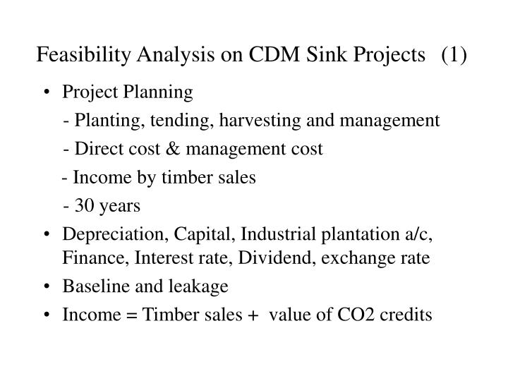 Feasibility Analysis on CDM Sink Projects