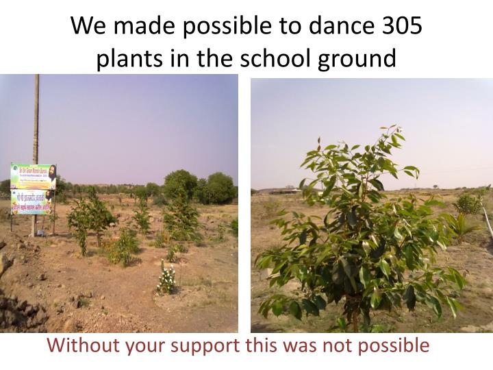 We made possible to dance 305 plants in the school ground