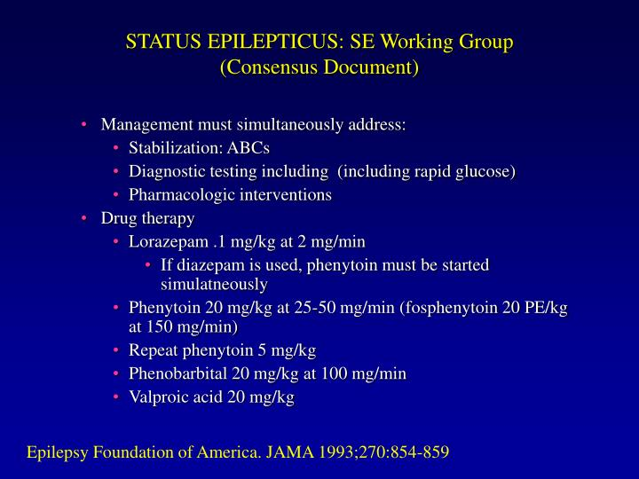 STATUS EPILEPTICUS: SE Working Group