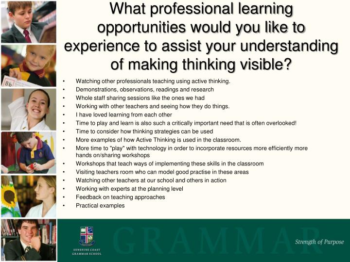 What professional learning opportunities would you like to experience to assist your understanding of making thinking visible?