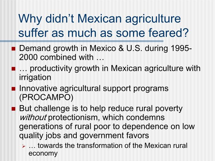 Why didn't Mexican agriculture suffer as much as some feared?