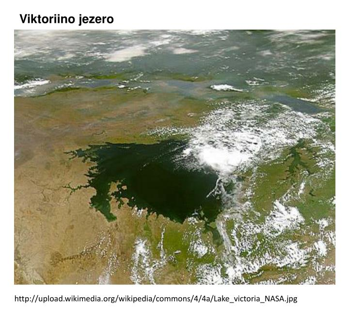 Viktoriino jezero