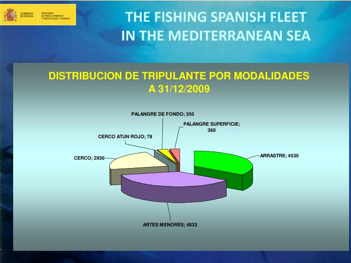 THE FISHING SPANISH FLEET