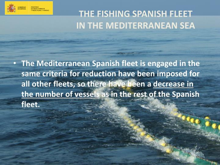 The Mediterranean Spanish fleet is engaged in the same criteria for reduction have been imposed for all other fleets, so there have been a