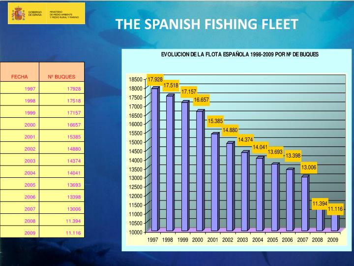 THE SPANISH FISHING FLEET