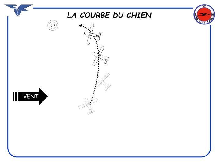 LA COURBE DU CHIEN