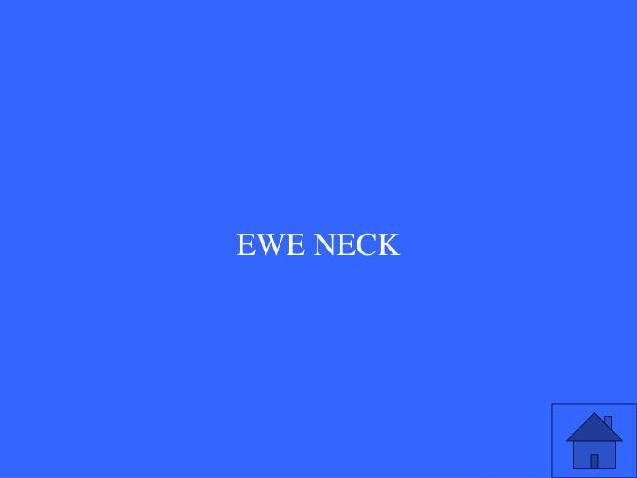 EWE NECK