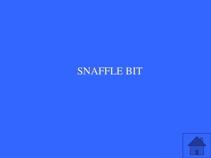 SNAFFLE BIT