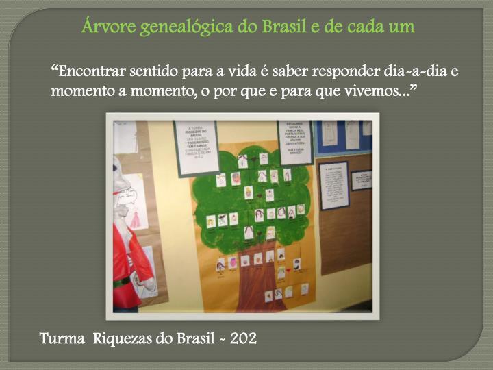 Árvore genealógica do Brasil e de cada um
