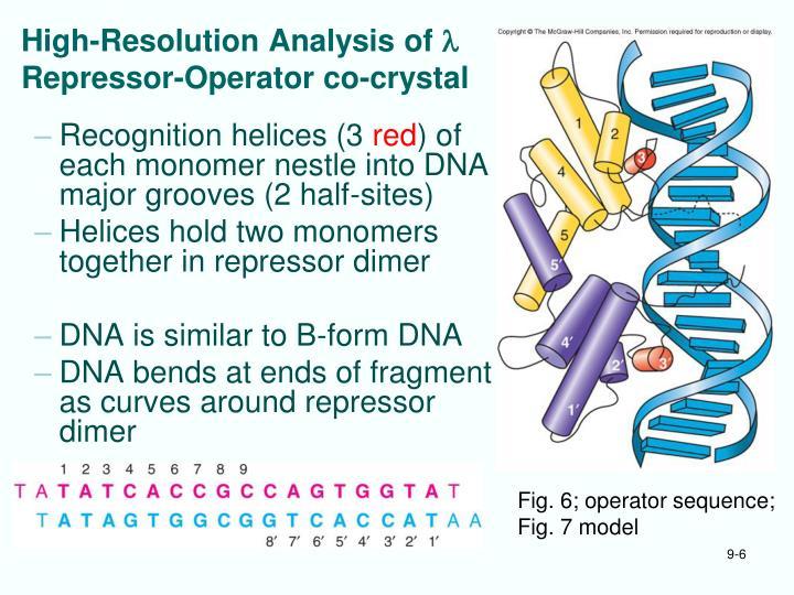 High-Resolution Analysis of